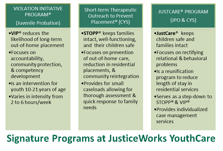 image showing table youth services program data